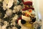 Casa do Papai Noel - 21/12