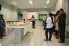 Lançamento campanha IECA - Dia das Mães 2011